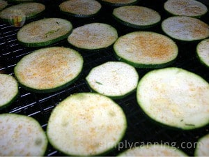 Seasoning sprinkled over raw zucchini slices.