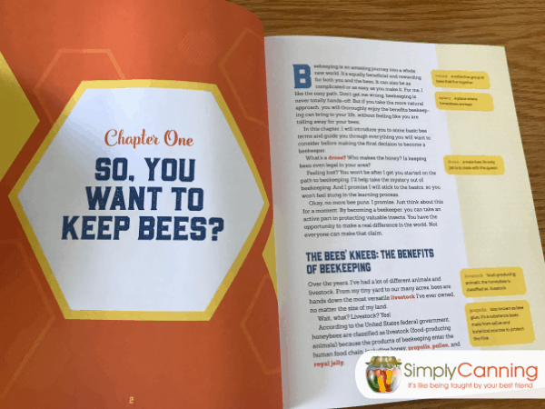 So you want to keep bees?