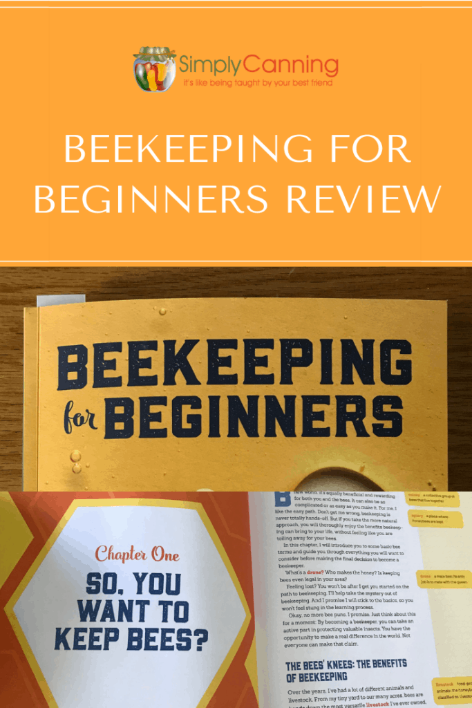Beekeeping for Beginners Review Pin