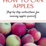 Canning Apple Pin1