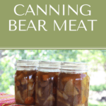 Canning Bear Meat