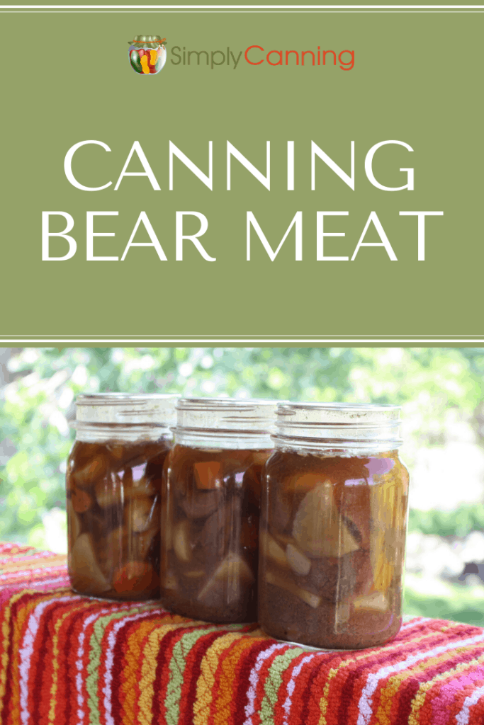 Canning Bear Questions-Pin1