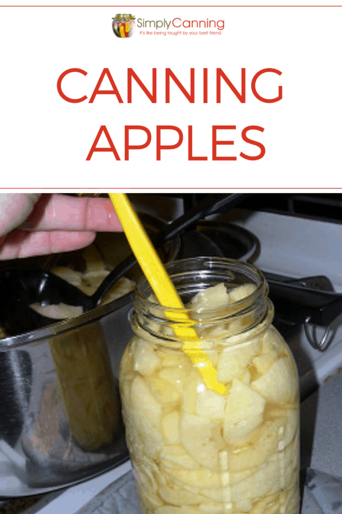 Canning apples pin