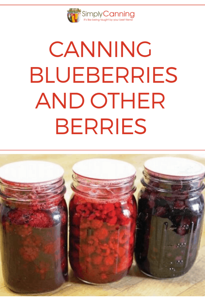 Canning blueberries pin