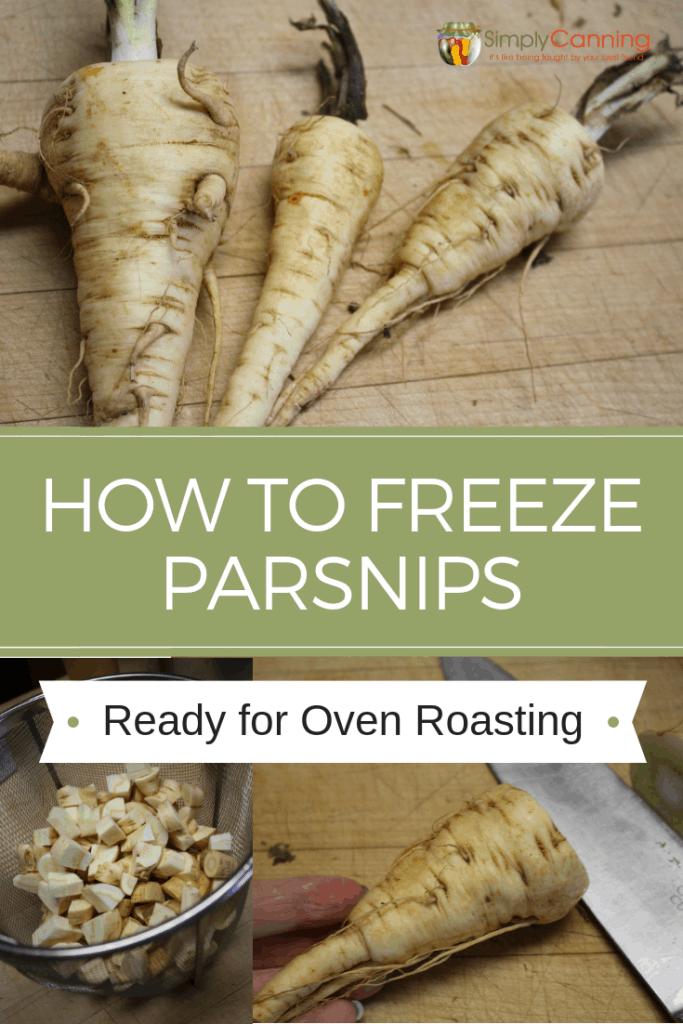 Freezing Parsnips-1