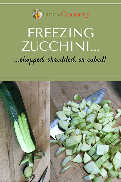 Freezing Zucchini-Pin1