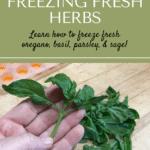 Freezing herbs pin1