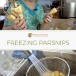 Freezing parsnips-2