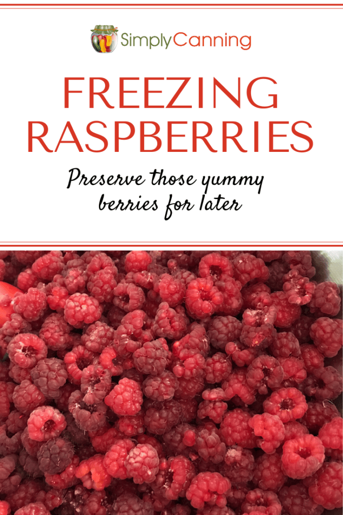 Freezing raspberries1