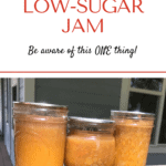 Low Sugar Jam pin1