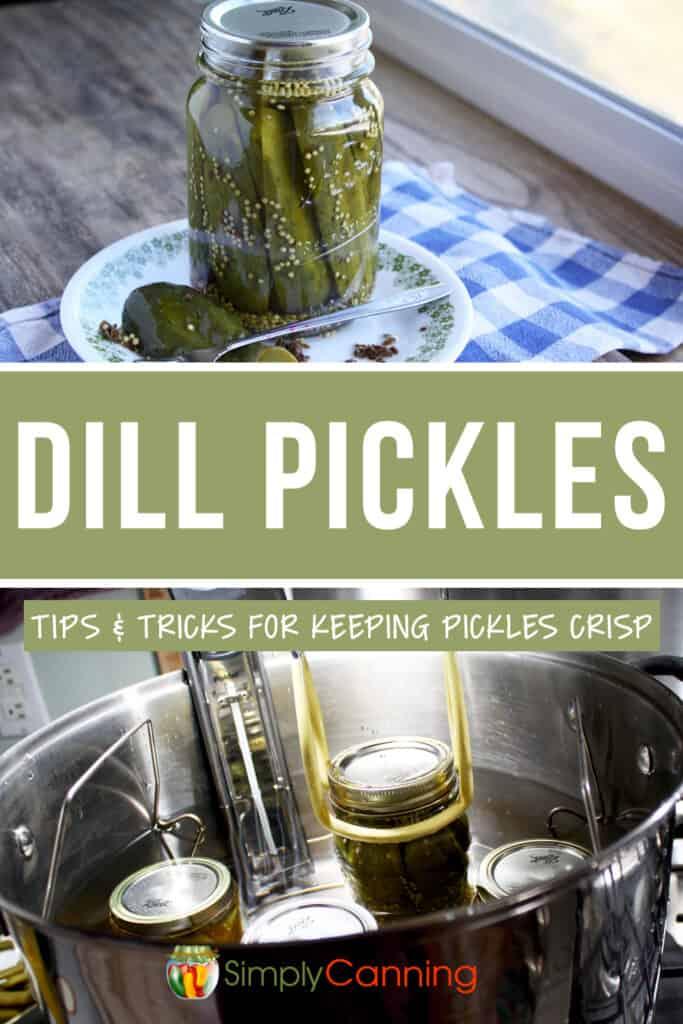 Low temp dill pickles pin1