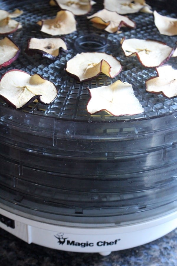 Magic Chef Dehydrator Ashley Adamant