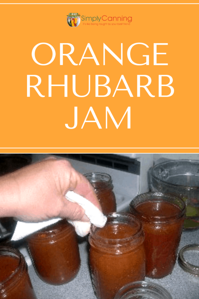 Orange rhubarb jam pin