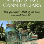 Sterilizing Jars pin1