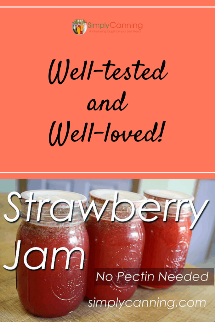 Strawberry jam pin