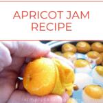 Peeling skins off of fresh apricots.