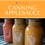 Jars of home canned applesauce in various shades of red and gold.