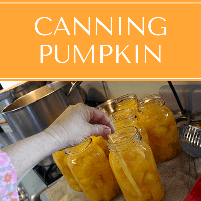 Canning Pumpkin