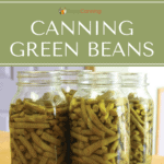 Quart jars filled with home canned green beans.
