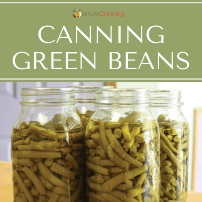 Canning green beans