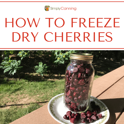 Freeze Dry Cherries