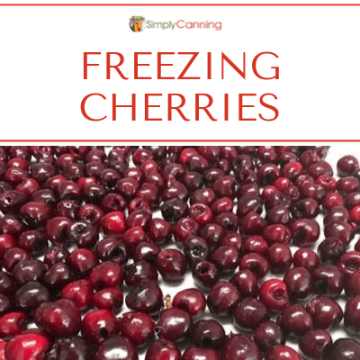 Rows of pitted cherries on a tray, with freezer paper underneath them.