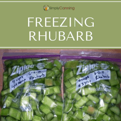Sliced green rhubarb packed into labeled freezer bags.