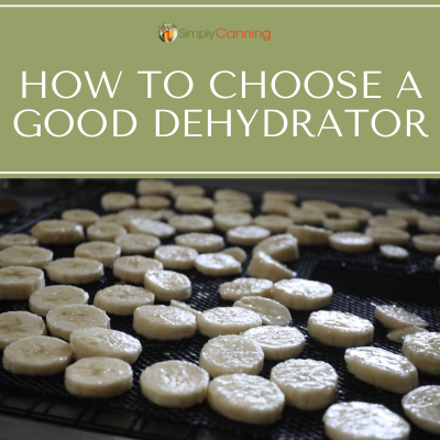 How to Choose a Good Dehydrator