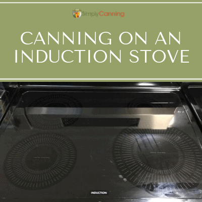 Photo of an induction stove top.