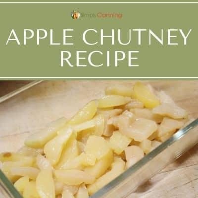 apple chutney recipe
