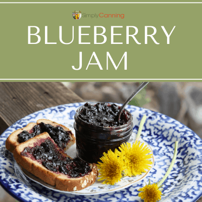 Small jar of dark blueberry jam. Yummy!