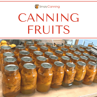 Canning fruits - Countertop filled with LOTS of canned fruit in jars.