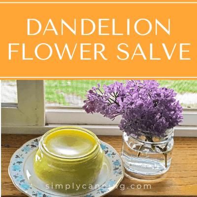A jar of dandelion flower slave.