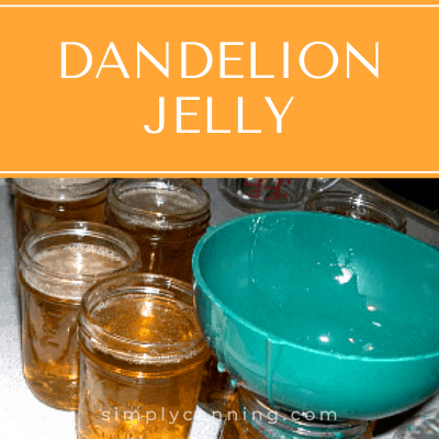 Beautiful dandelion jelly.