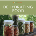 Jars filled with dehydrated food.
