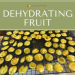 Sliced fruit layered on a dehydrator tray.