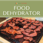 Food dehydrator tray covered with dried slices of food.