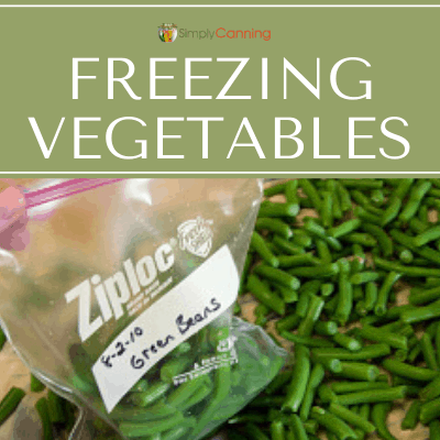 Putting snapped green beans into a labeled freezer bag.