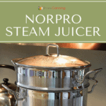 Steam juicer with its lid on.
