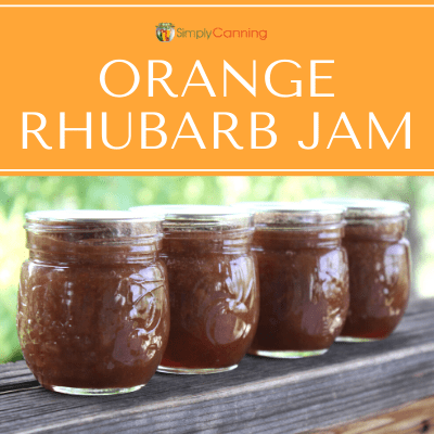 Four small jars of orange rhubarb jam.
