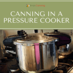 A pressure cooker sitting on the stovetop.