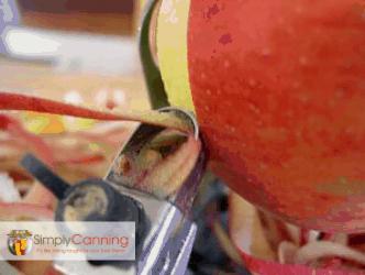 Using the apple slicer peeler. Showing how it peels.