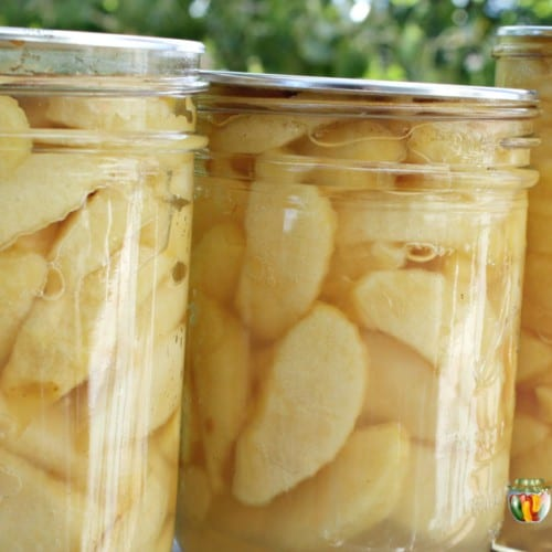 jars of home canned apples