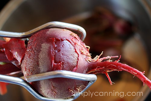 canning beets6