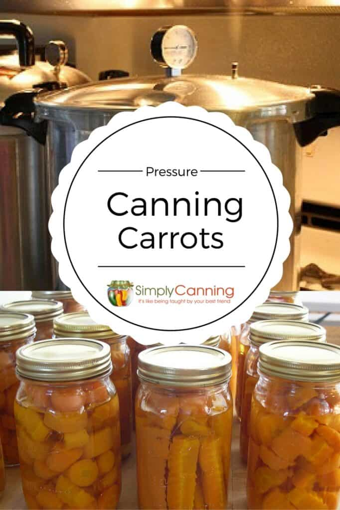 canning carrots pin