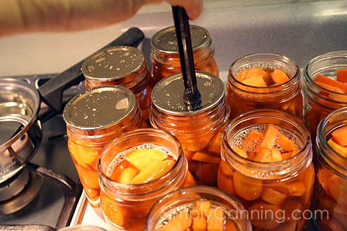 canning carrots12