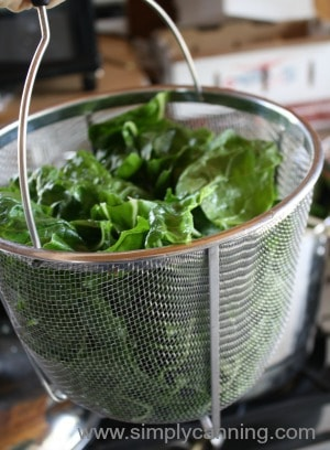 Greens in a blancher basket.