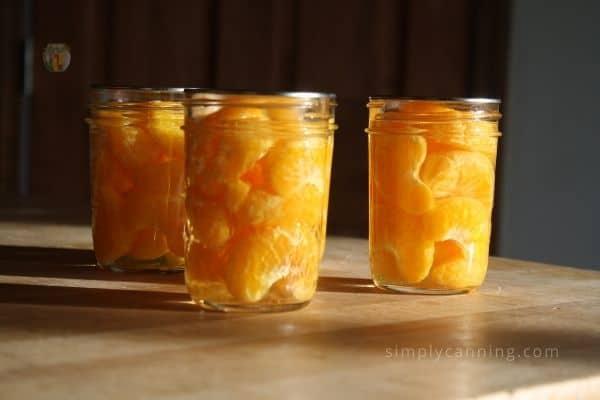 Three jars of orange segments sitting in the sunshine.