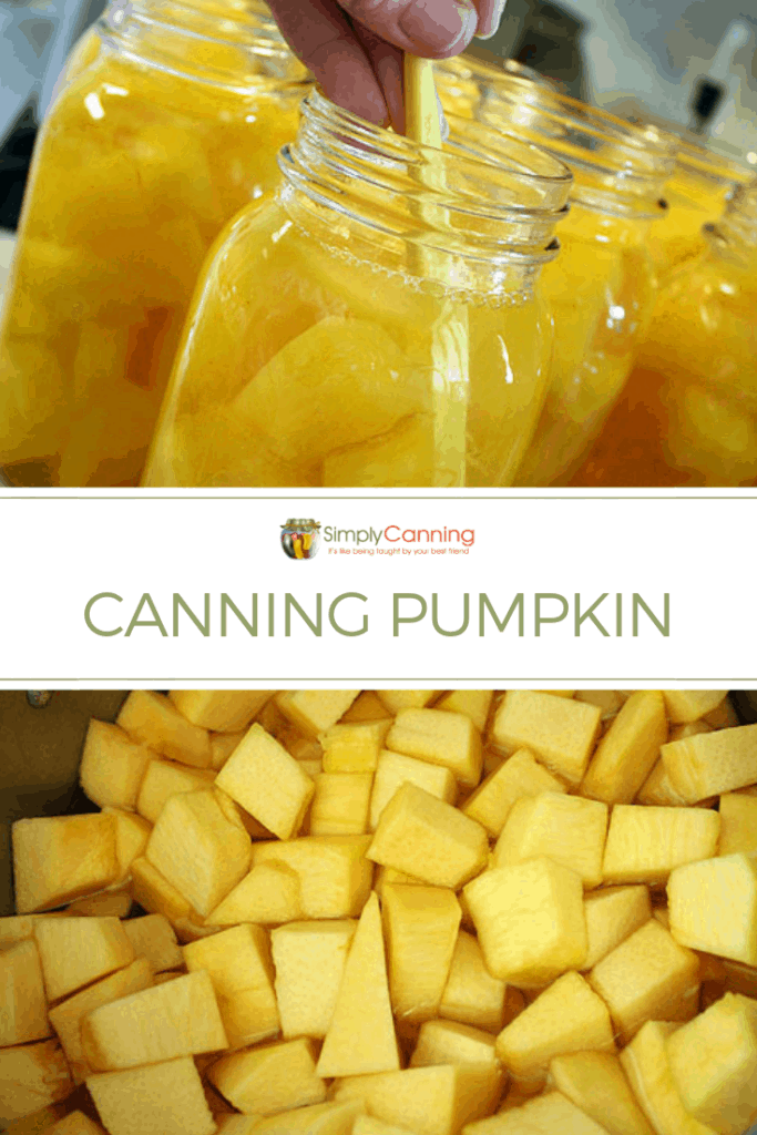 Canning Pumpkin: Cubes Give You the Most Options for Later!