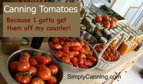 Canning Tomatoes: I gotta get them off my counter!